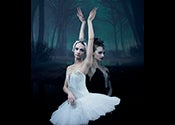 NADC Swan Lake Event Thumbnail 175x125 (002).jpg